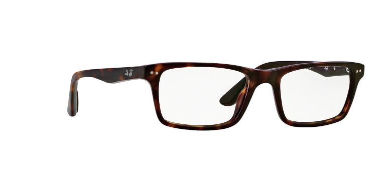 Ray-Ban RX5288 Active Lifestyle Eyeglasses 2012